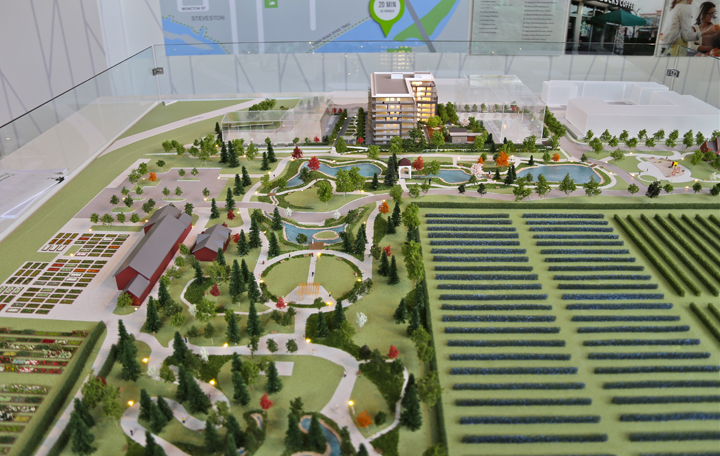Calla-At-The-Gardens-Townline-VIP-Access_32